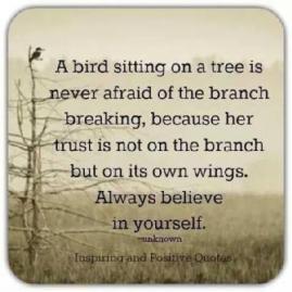 bird sitting on a limb_trust ourselves