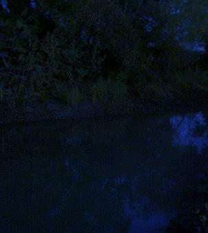Pond_001